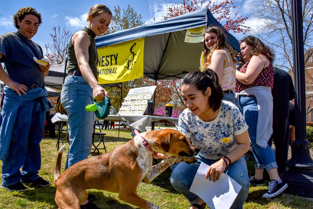 Four people look as a woman pets a dog at the International Festival at UNCG.